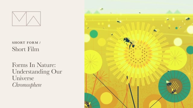 Short Form > Short Film: Forms In Nature